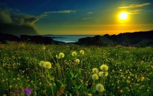 Full HD Manzara Fotoğrafları