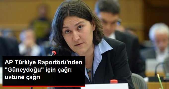 AP Türkiye Raportörü'nden Çağrı: Silah Bırakın İnsan Haklarına Uyun