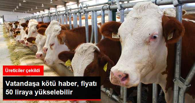 Üreticiler Rest Çekti, Süt 50 Liraya Yükselebili