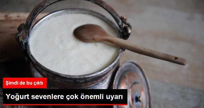 Köy Yoğurdu Diye Satılan Ürünlere Dikkat
