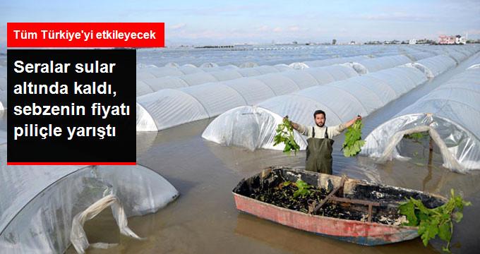 Mersin'i Sel Bastı Sebze Fiyatı Piliçle Yarışıyor