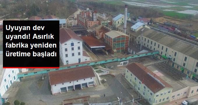 Alpullu Şeker Fabrikası Yeniden Üretime Başladı