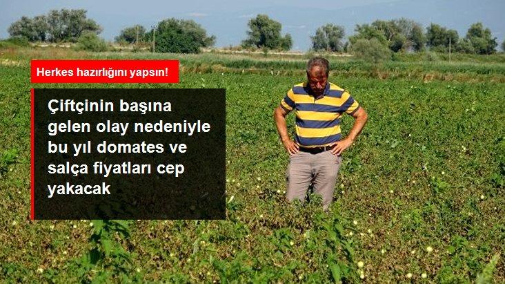 Bursa'nın Ovalarında Ürünler Kurudu